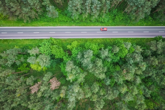 aerial-and-symmetric-view-of-a-road-in-the-woods-picjumbo-com.jpg