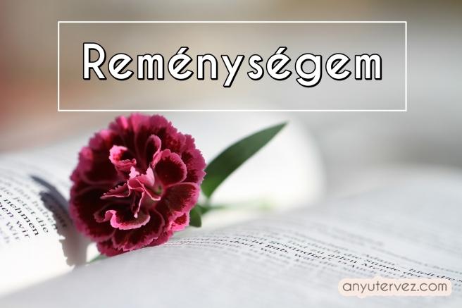 bible-888299_1920.jpg