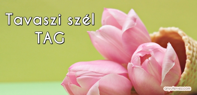 tulips-2148691_1920.jpg
