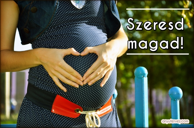 pregnant-244662_1920