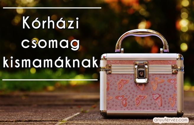 briefcase-1743518_1920