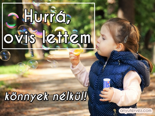 kid-1241817_1920.jpg